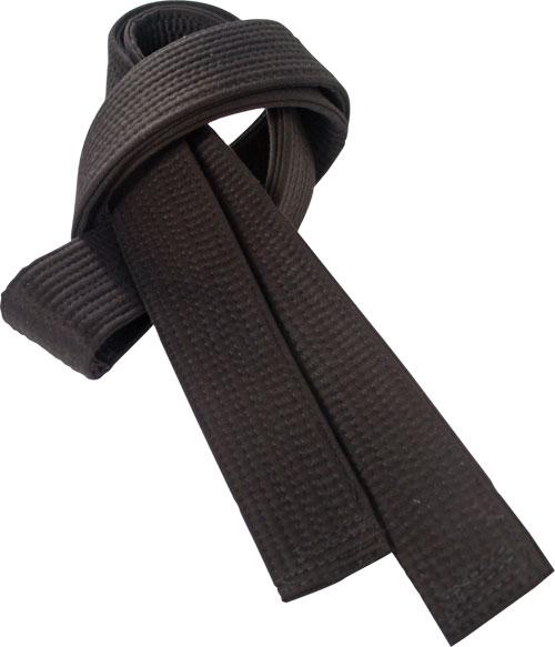 Earn your Black Belt in Ninjutsu